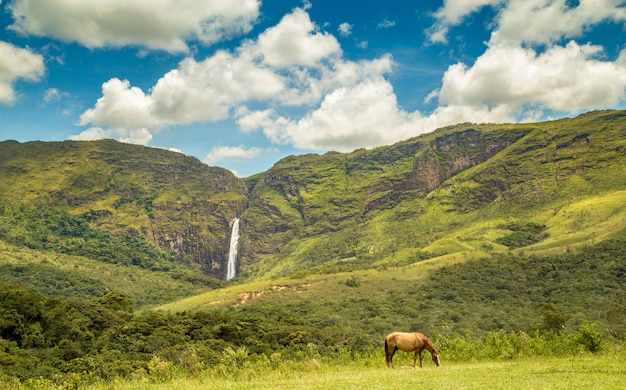 Serra Da Canastra Brazil Park Narodowy Spada Danta Premium Zdjęcia