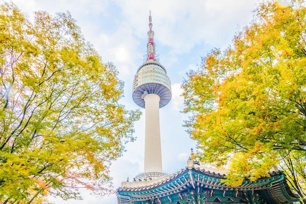 Seul Wierza W Seoul Mieście Darmowe Zdjęcia