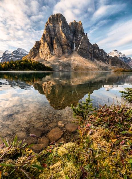 Skalistej Góry Odbicie Na Cerulean Jeziorze W Assiniboine Prowincjonału Parku Premium Zdjęcia