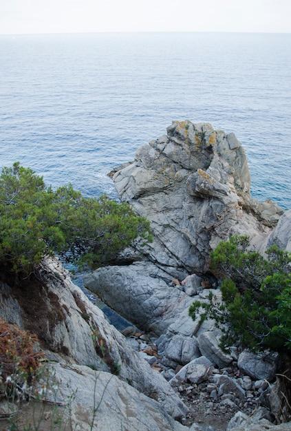 Skały Na Wybrzeżu Lloret De Mar. Nabrzeże Lloret De Mar Costa Brava Hiszpania. Premium Zdjęcia