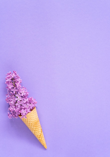 Skład lody z fioletowymi kwiatami bzu na fioletowym tle. flat lay. widok z góry. koncepcja kreatywnych lato Premium Zdjęcia