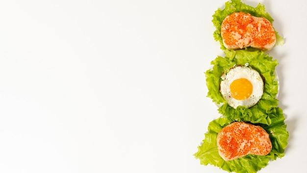 Skopiuj Miejsce Układ śniadanie Białko Na Prostym Tle Darmowe Zdjęcia