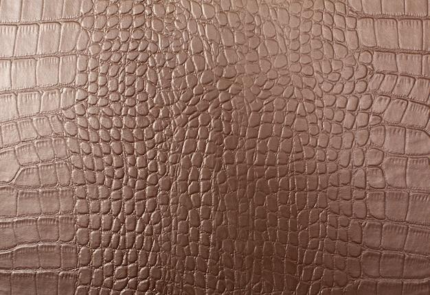Skóra Z Krokodylem Wzór Tła Skóry Premium Zdjęcia