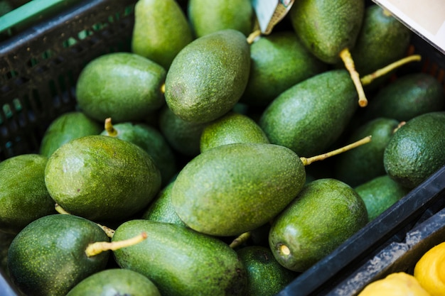 Skrzynka dojrzałych zielonych awokado w supermarkecie Darmowe Zdjęcia