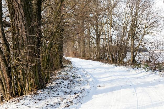 Ślady Bieżnika Na śniegu. Pokryte śniegiem W Sezonie Zimowym Drogi. Zdjęcie Zrobione Z Bliska. Niebo I Drzewa W Kadrze Premium Zdjęcia