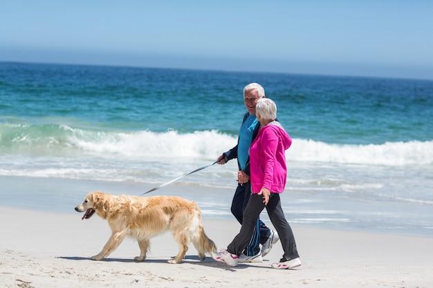 Śliczna dojrzała para chodzi ich psa Premium Zdjęcia