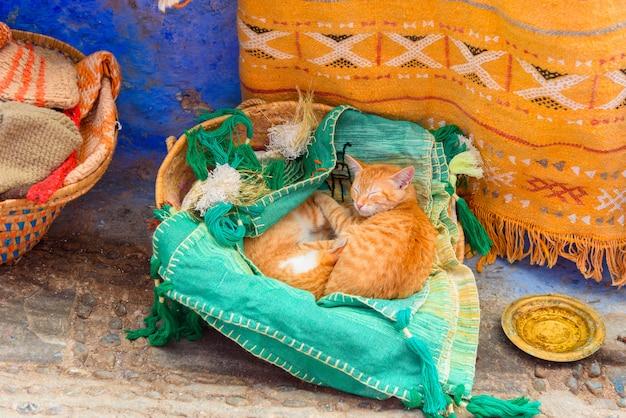Śliczni Imbirowi Koty śpi W Koszu W Sklep Z Pamiątkami Premium Zdjęcia