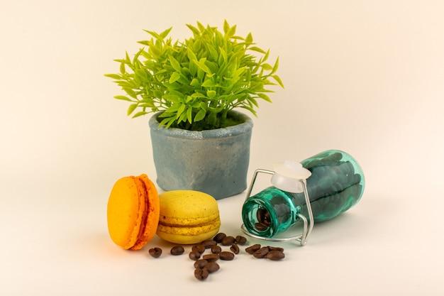 Słoik Z Widokiem Z Przodu Z Francuskimi Makaronikami Do Kawy I Zieloną Rośliną Na Różowej Powierzchni Darmowe Zdjęcia