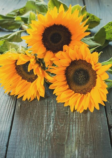 Słoneczniki na stole Premium Zdjęcia