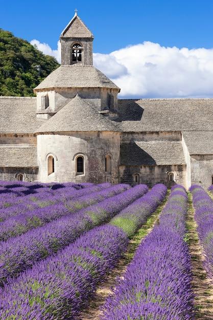 Słynne Opactwo Senanque. Francja. Darmowe Zdjęcia