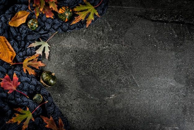 Spadku Zmroku Kamienia Tło Z Jesień Czerwienią I żółtymi Liśćmi Grże Pulower, Koc I Małe Banie, Odgórnego Widoku Kopii Przestrzeń Premium Zdjęcia