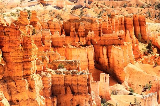 Spektakularne Skalne Wieże Hoodoo W Bryce Canyon, Utah, Usa Premium Zdjęcia