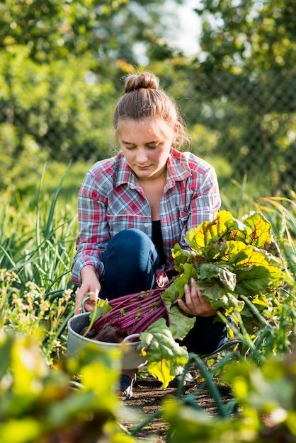 Średnio Strzał Kobieta Ogrodnictwo Darmowe Zdjęcia