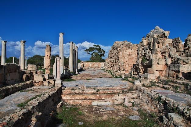 Starożytne Ruiny Salami, Cypr Północny Premium Zdjęcia