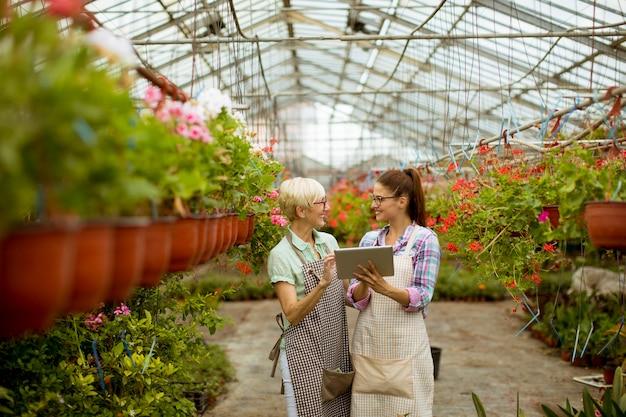 Starsze i młode nowożytne kwiaciarni kobiety patrzeje cyfrową pastylkę Premium Zdjęcia