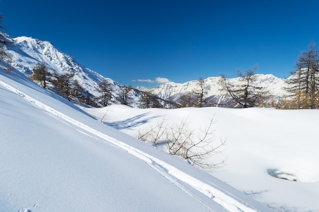 Stok Narciarski W łuku Alpejskim Premium Zdjęcia