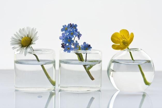 Strzał Zbliżenie Trzech Szklanych Wazonów Z Różnymi Kwiatami Na Białym Darmowe Zdjęcia