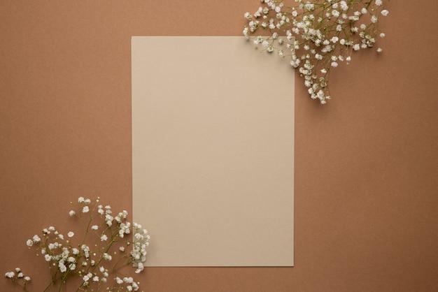 Sucha Gałąź Kwiatu Na Jasnym I Ciemnym Brązowym Tle. Trend, Minimalna Koncepcja Z Copyspace Do Widoku Z Góry Tekstu Premium Zdjęcia