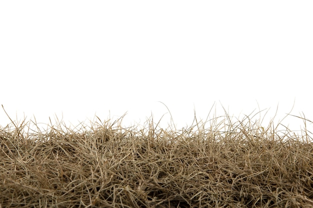 Sucha Trawa Odizolowywająca Na Białym Background.dry Trawy Polu Z ścinek ścieżką. Premium Zdjęcia