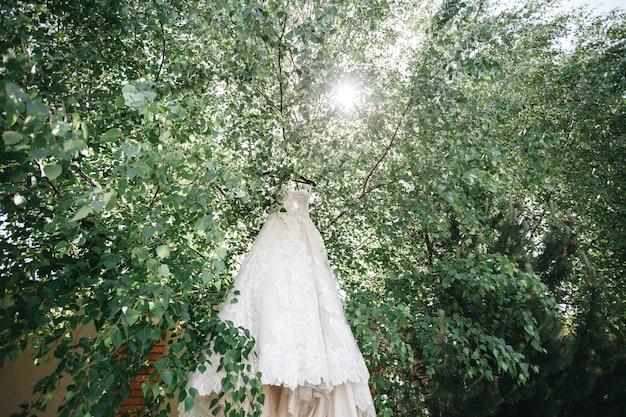Suknia Panny Młodej Wisi Na Drzewach W Promieniach Słońca Darmowe Zdjęcia