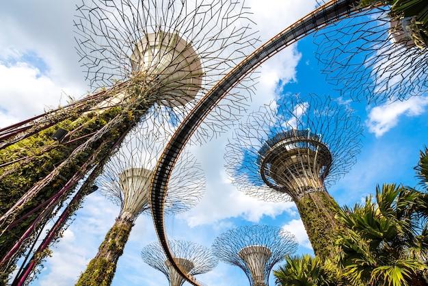 Super Drzewo Groove W Garden By The Bay, Popularnym Miejscu Dla Turystów W Singapurze Premium Zdjęcia