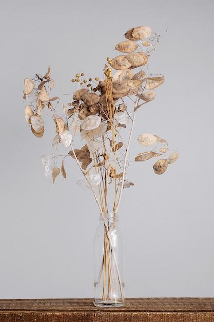 Susz Kwiaty W Szklanym Wazonie Na Szarym Tle. Premium Zdjęcia