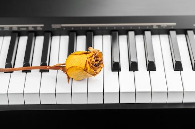 Suszona Róża Na Fortepianie Premium Zdjęcia