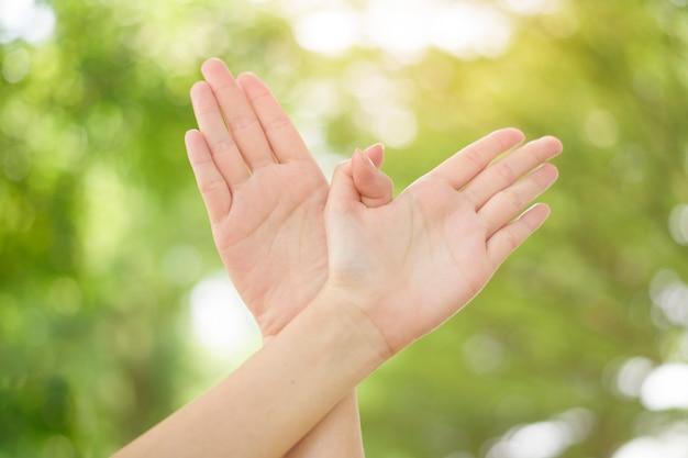 Światowy Dzień Pokoju, Ludzką Ręką Na Zielonym Tle Premium Zdjęcia