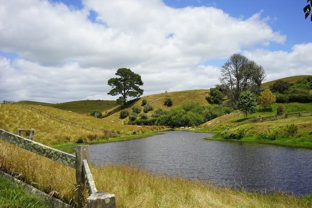 Świetne Ujęcie Filmu Hobbiton Rozgrywającego Się W Matamata W Nowej Zelandii Darmowe Zdjęcia