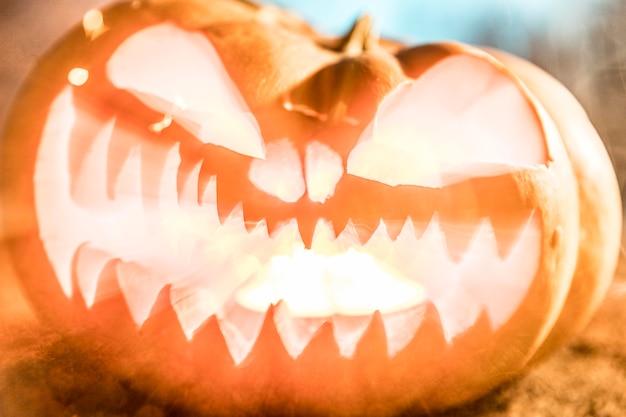Święto Halloween Z Rzeźbioną Dynią Darmowe Zdjęcia