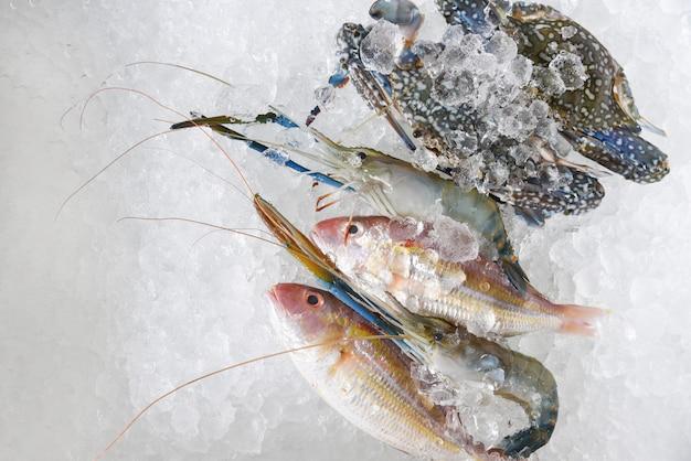 Świeże Surowe Owoce Morza Na Lodzie Premium Zdjęcia