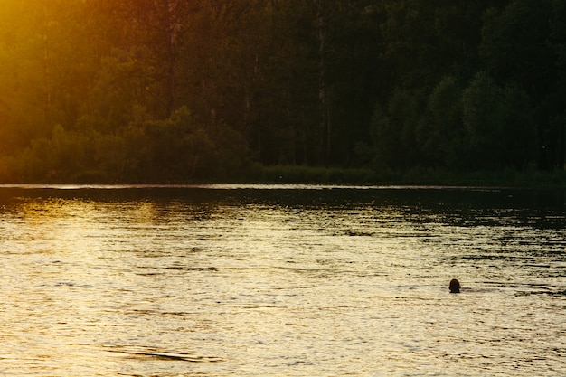 Sylwetka mężczyzna cieszy się wieczór słońce i kąpać się w halnej rzece. Premium Zdjęcia