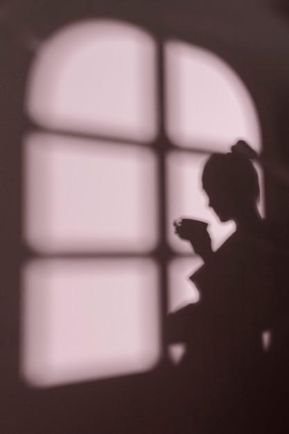 Sylwetka Młodej Kobiety W Domu Z Cieniami Okna Darmowe Zdjęcia