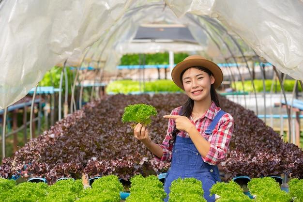 System Hydroponiczny, Sadzenie Warzyw I Ziół Bez Użycia Gleby Dla Zdrowia Darmowe Zdjęcia