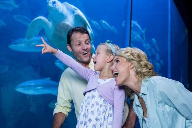Szczęśliwa Rodzina Patrząc Na Akwarium Premium Zdjęcia