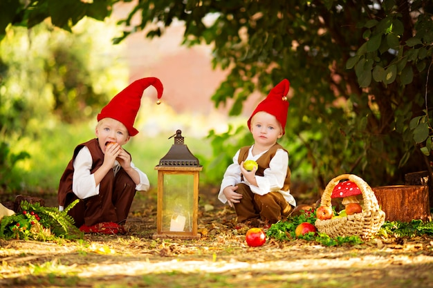Szczęśliwe Bajkowe Leśne Krasnale Chłopcy, Bracia Bawią Się I Spacerują Po Lesie, Zbierają Jabłka Premium Zdjęcia