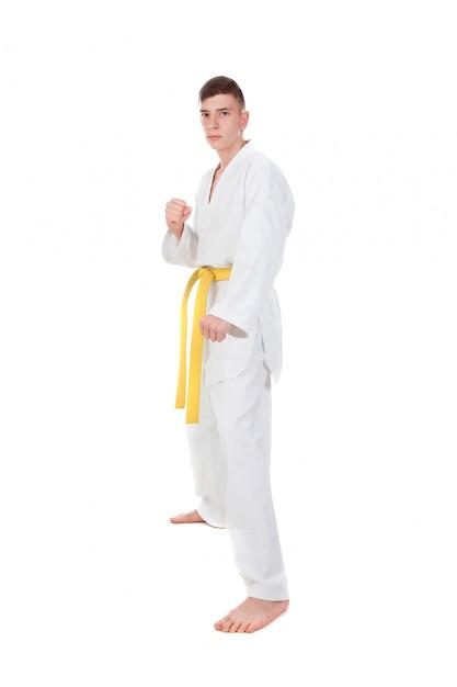 Szczupły facet uprawiający sztukę walki Premium Zdjęcia
