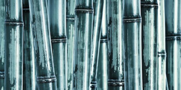 Szeroki Twardy Bambusowy Tło Premium Zdjęcia