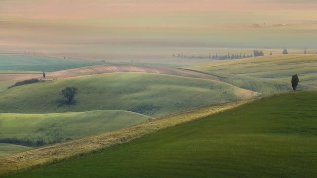 Szerokie Ujęcie Trawiastych Wzgórz Z Drzewami Pod Zachmurzonym Niebem Darmowe Zdjęcia