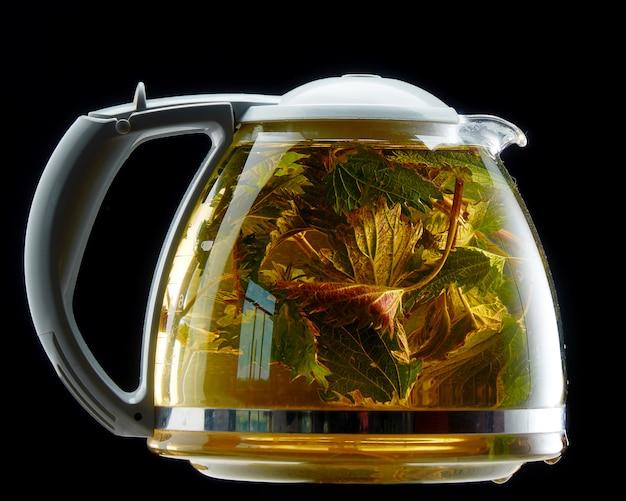 Szklany czajniczek z leczniczą pokrzywą na czerni odizolowywającym Premium Zdjęcia