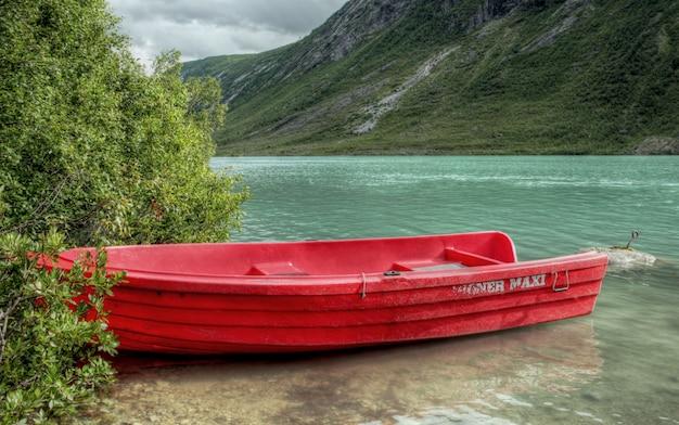 Szorstka Natura W Norweskim Krajobrazie Premium Zdjęcia