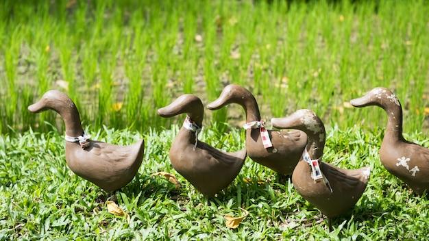 Sztuczne Posągi Kaczki W Pobliżu Farmy Ryżu Premium Zdjęcia