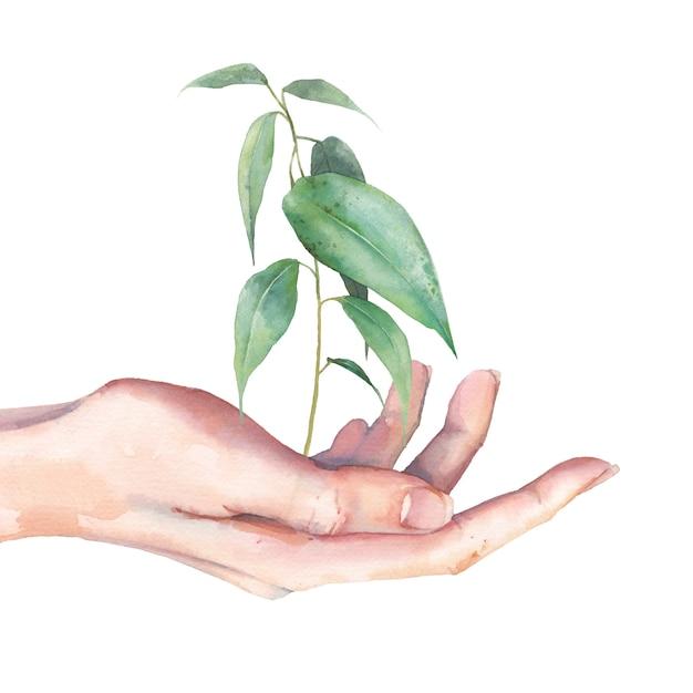 Sztuka światowego Dnia środowiska. Akwarela Ilustracja Ekologia. Ręka Z Zieleni Flancą Odizolowywającą Na Białym Tle. Premium Zdjęcia
