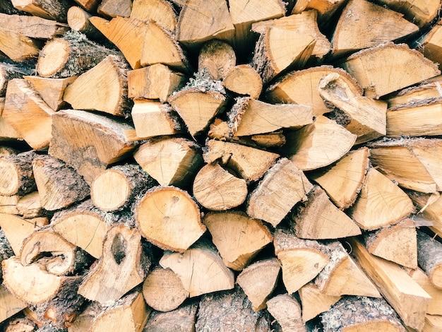 Tekstura Kłody Drewna Darmowe Zdjęcia