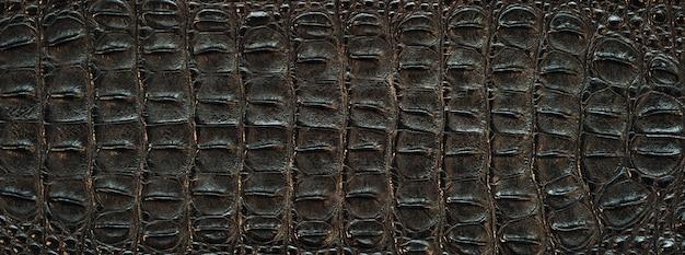 Tekstura Skóry Krokodyla Premium Zdjęcia