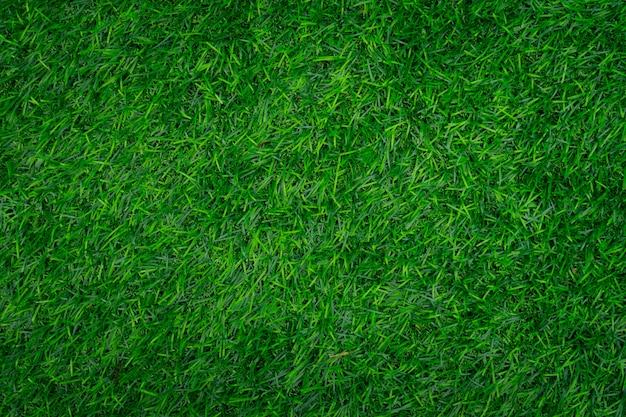 Tekstura zielona trawa. Premium Zdjęcia