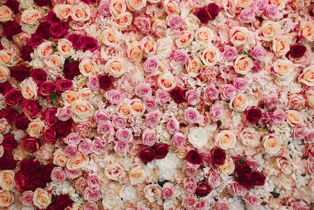 Tło Kwiaty Darmowe Zdjęcia