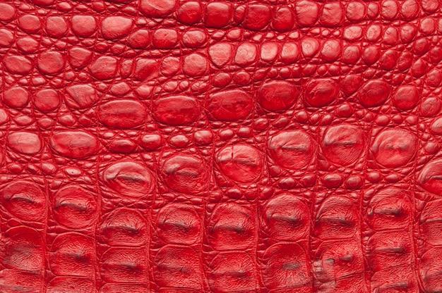 Tło Skóry Krokodyla Czerwony. Premium Zdjęcia