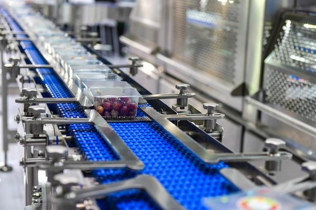 Transfer puszek produktów spożywczych na zautomatyzowane systemy przenośników automatyki przemysłowej dla pakietu Premium Zdjęcia