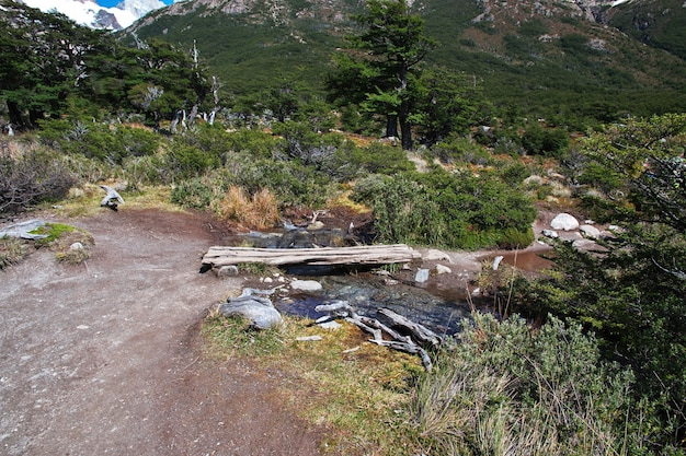 Trekking Do Fitz Roy, El Chalten, Patagonii, Argentyny Premium Zdjęcia